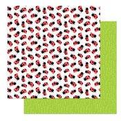 Fern & Willard 12x12  Ladybug paper