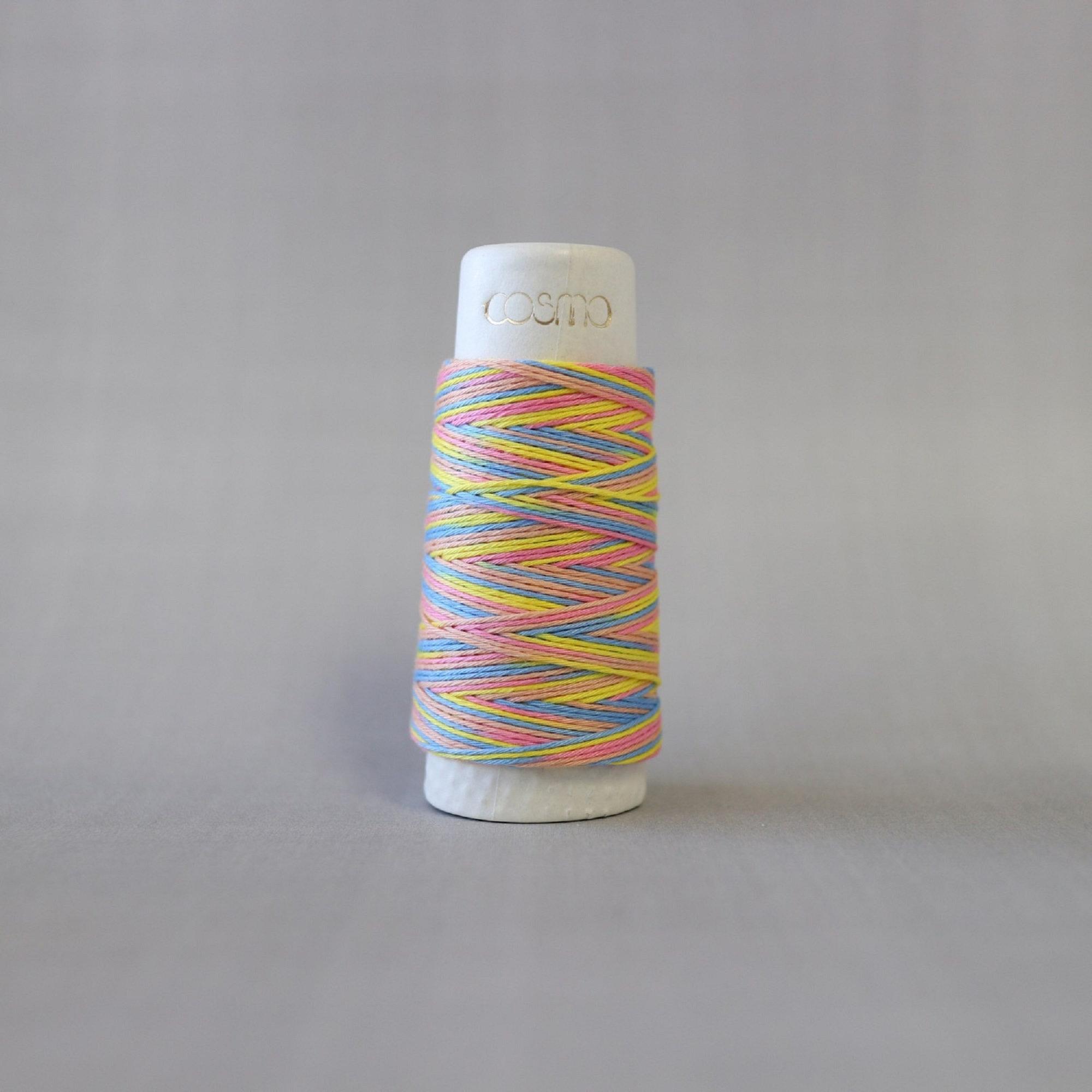 Lecien COSMO hidamari & Sashiko Variegated Cotton Thread - 30m - No. 89-303 Rainbow Sorbet