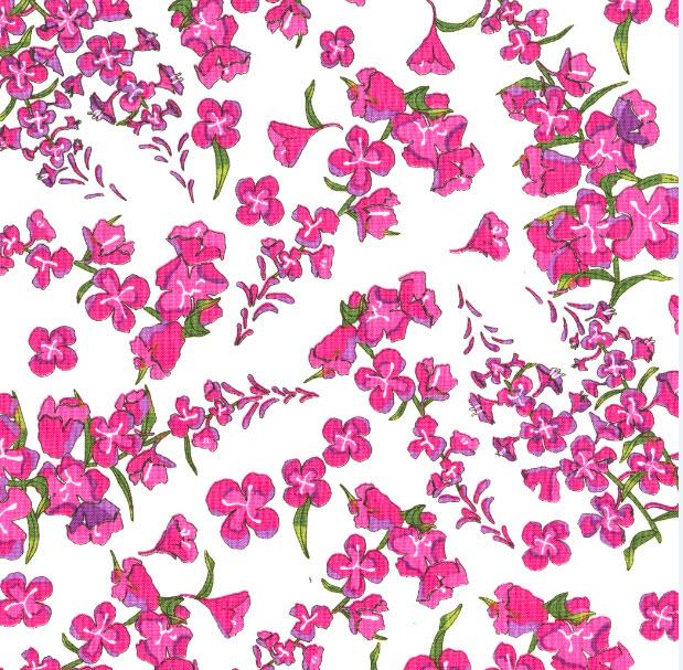 Alaskan Wildflowers Fireweed White Y1894-1792