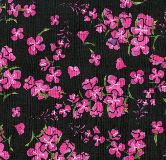 Alaskan Wildflowers Fireweed Black Y1894-3