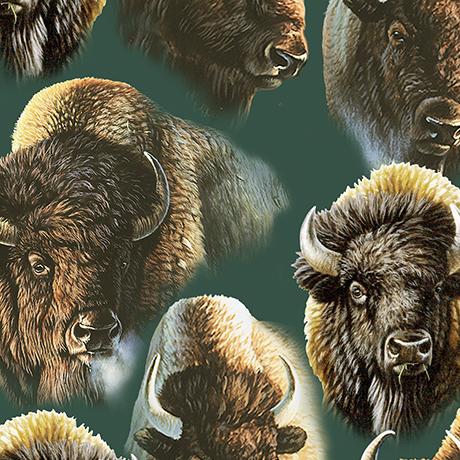Where Buffalo Roam QT 24989-F Forest