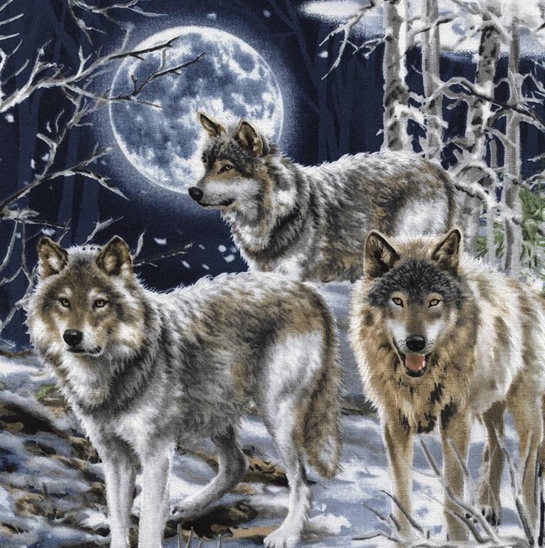 Moonlight Wolves TT C4889