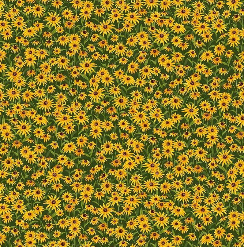 Abundant Garden Yellow Daisy NC 21846-52