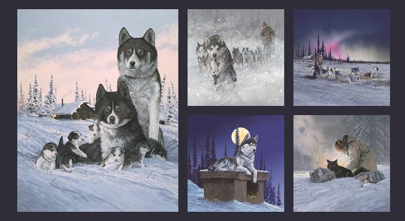 Panel Jon Van Zyle 2 Huskies Blocsk P18 Dog Team