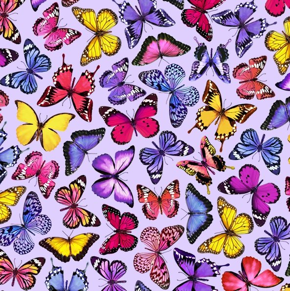 Butterflies TT C7574-Purple