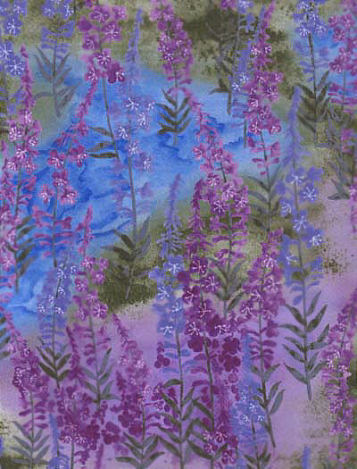 Fireweed in Brights-PN004-120