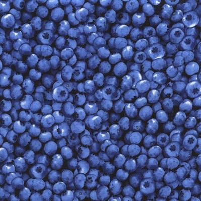 Blueberries-TT-C1809 Blueberry