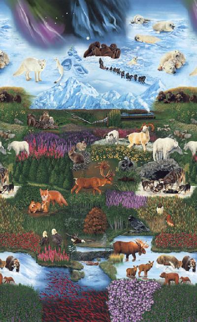 Interior Alaska No.2 K 8862-205 Multi