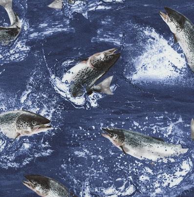 Jumping Salmon-TT Nature C2684