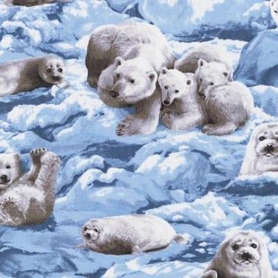Polar Bears & Seals K 14491-217 Glacier