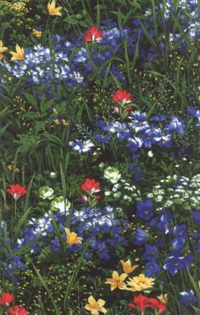 Wildflowers VII-M32970-14 Fall