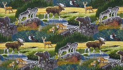 Bringing Nature Home Collage K 15210-268