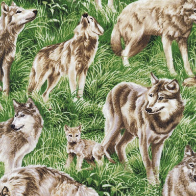 Wolves in Grass-FQ-112-29481