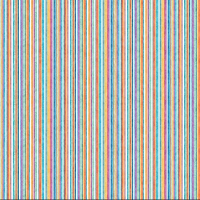 Arctic Snow Stripe Barbara Lavallee NC 20654-42