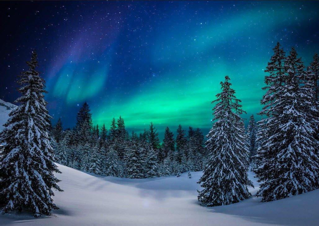 Panel Aurora Snow P26 Hoff T4860-532