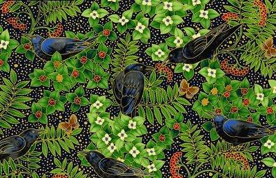 Midnight Sun Raven-K-Ayem-14666-69 Midnight