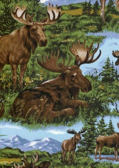 Timeless Lg Moose TT C7252
