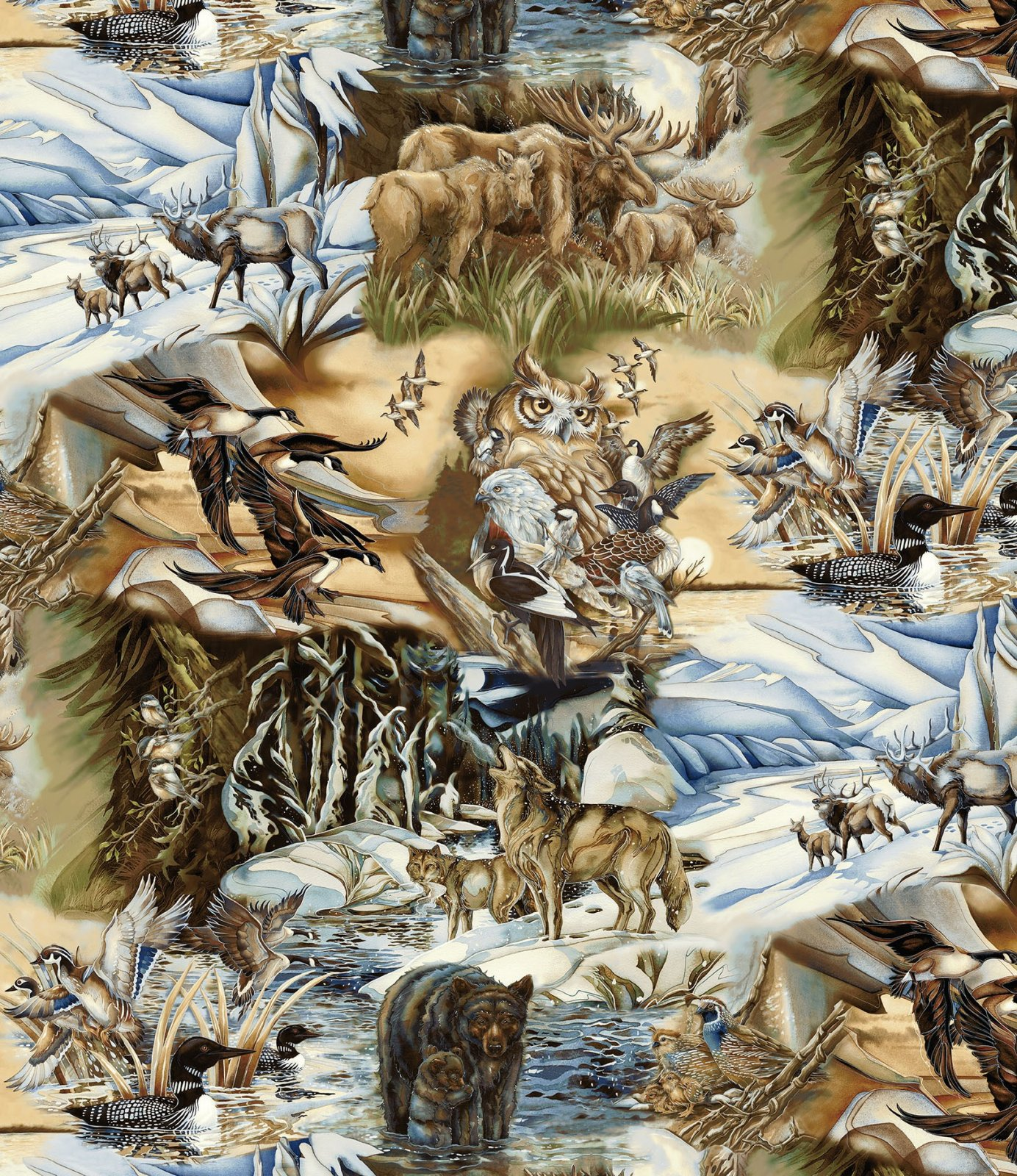 Alaska's Wild Kingdom Feature Print K 14495-268