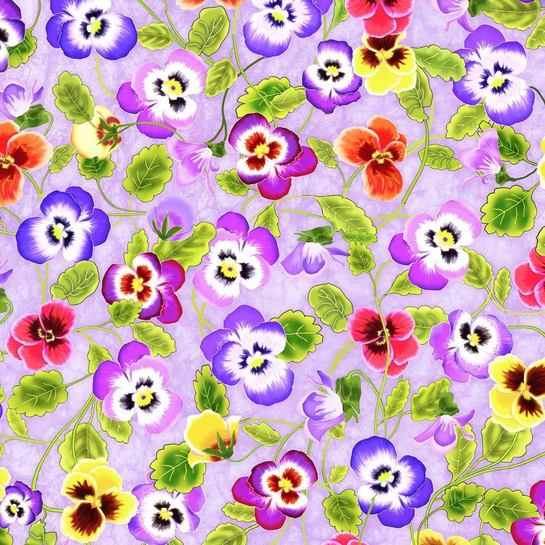 Garden Delight Pansy Only PB GDEL4490 LC Teresa Ascone