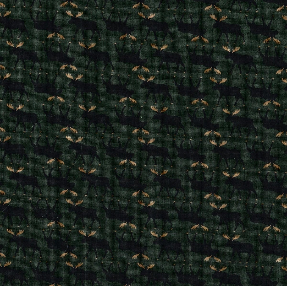 Mini Moose Green TT C1719 Pine