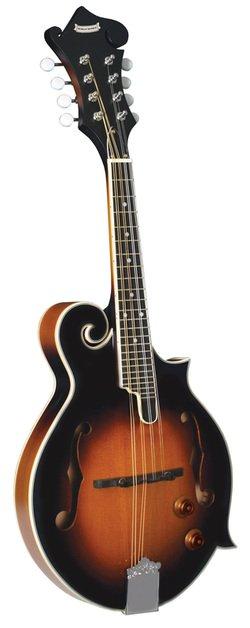 Morgan Monroe MM-100FME Acoustic Electric Mandolin