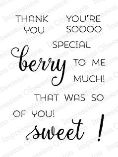IO - Berry Sweet Stamp Set