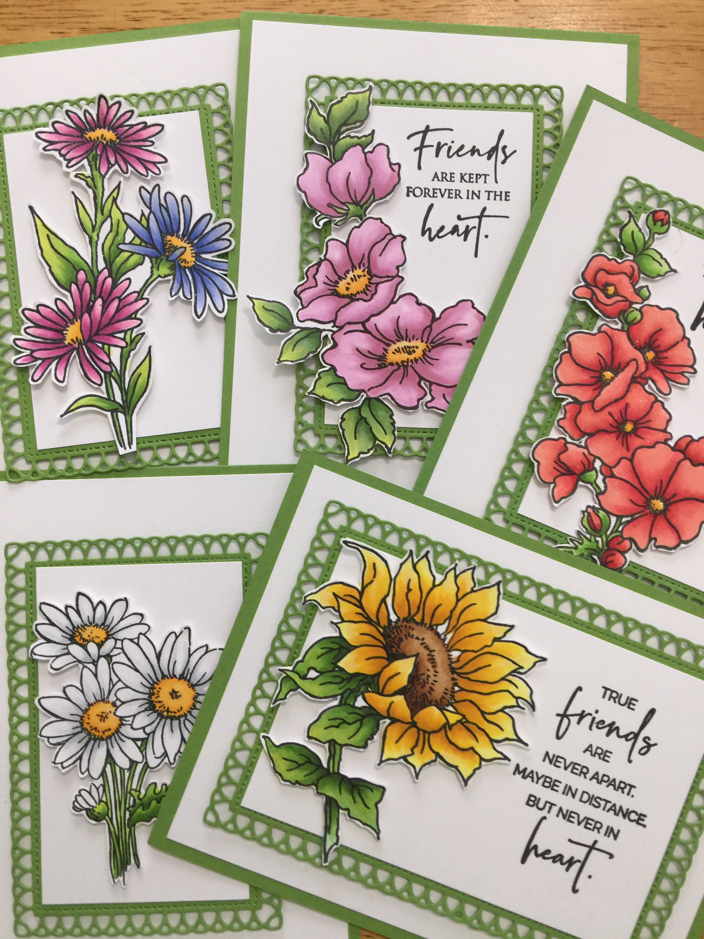 Stampendous Floral Wonders Class Kit