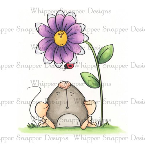Whipper Snapper - Anonymouse Stamp