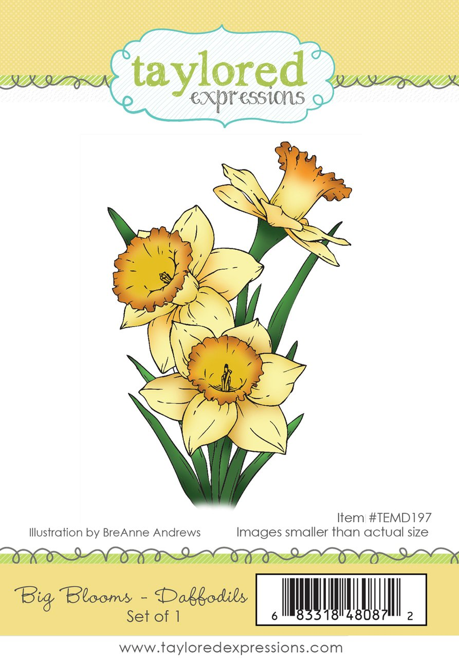 Taylored Expressions - Big Blooms: Daffodils Stamp/Die