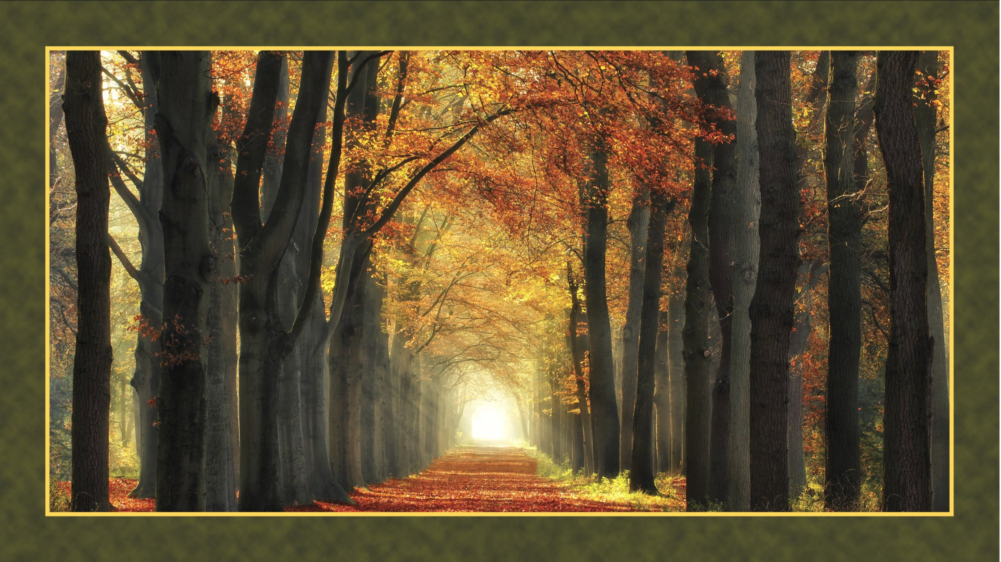 QT - Artworks - In Love With Fall Again Panel - 24634-X