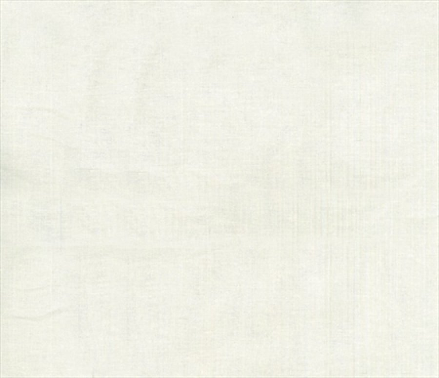 Blank Quilting - Eclipse-Solid - 3955-White