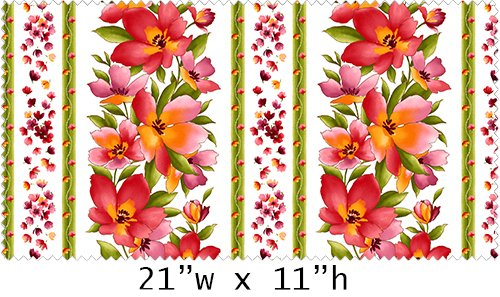 Maywood - Catalina-Border Print-Coral-Pink on White - 8402-W