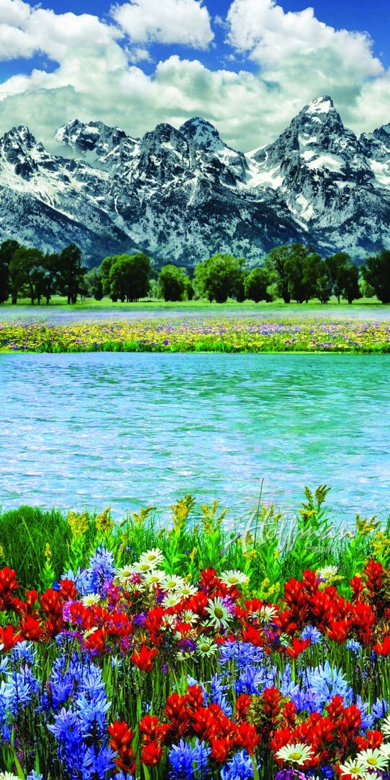 Hoffman - Land That I Love-DIGITAL-Spring - P4289 PER YARD