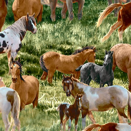 SSI - Mustang Meadows-Horses Allover-Green - 51754-712S
