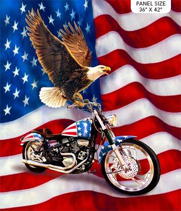 LIBERTY RIDE 2 - Eagle, Motorcycle Panel