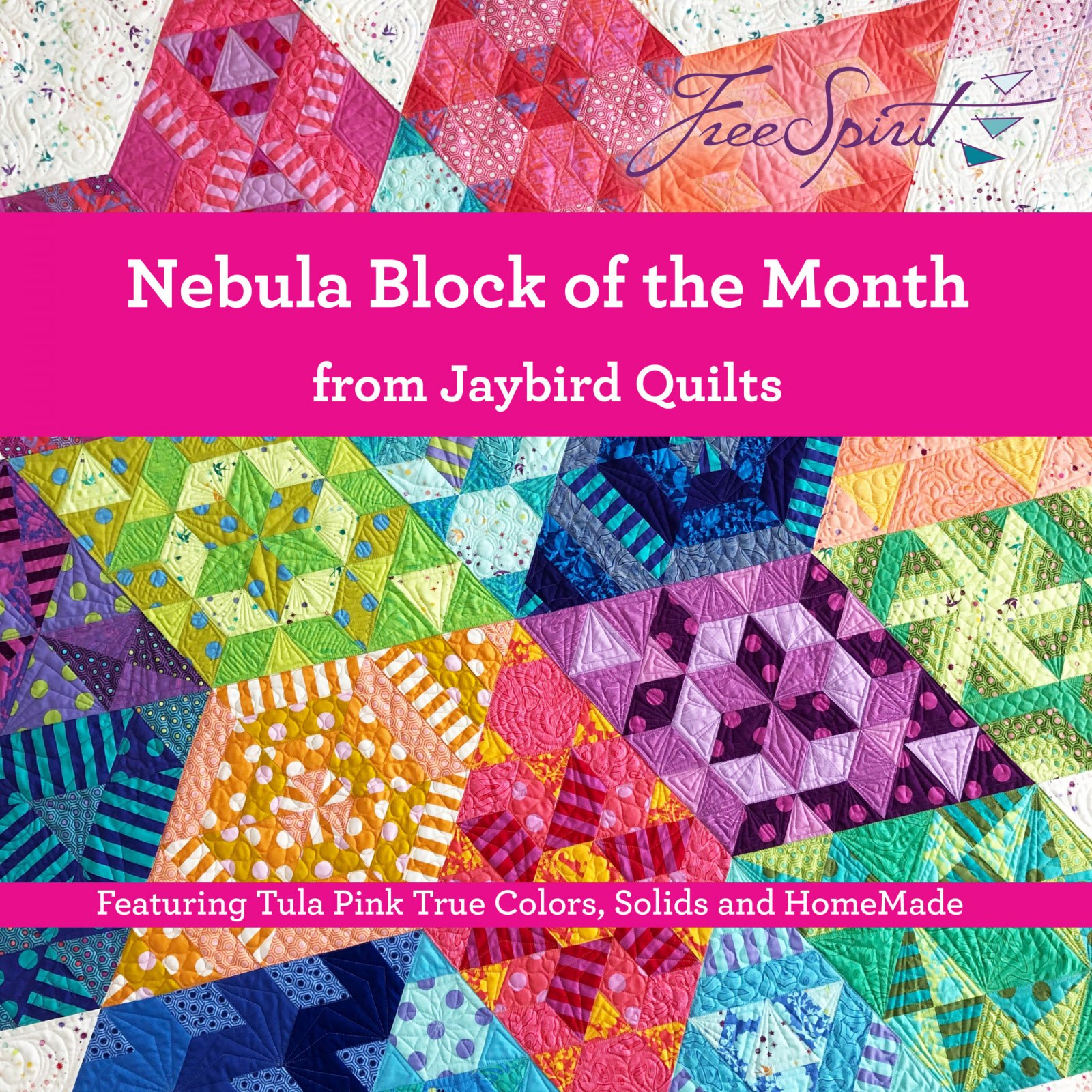 Tula Pink Nebula Block of the Month - Installment (3 parts)