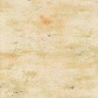 Essentials - Vintage Texture - Buff - WP89233VE-112