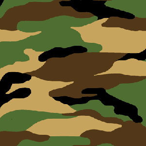 Camo Flannel CMFY-5251-33 By AE Nathan Co