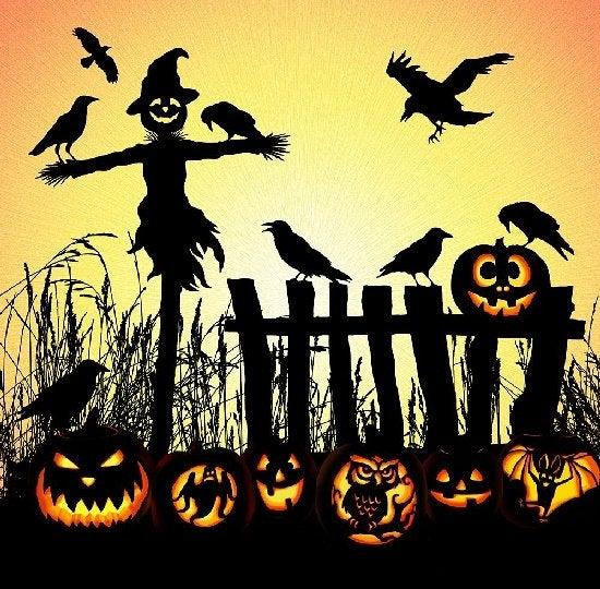 Scarecrow Pumpkin Panel Digital Cotton Fabrics Q4463-116-HARVEST By Hoffman Fabrics