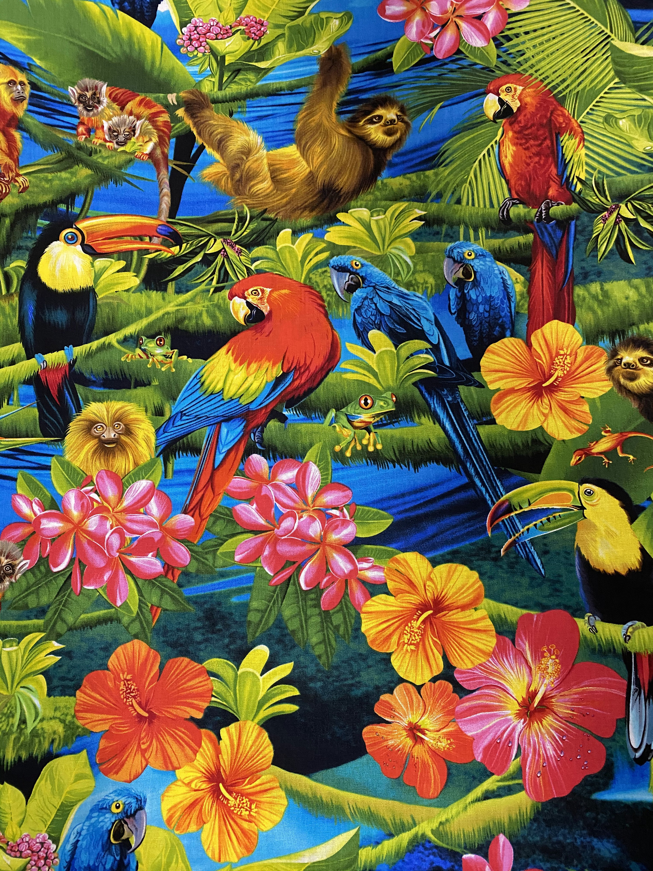 Timeless Treasure Rainforest Fabric Multi C9815