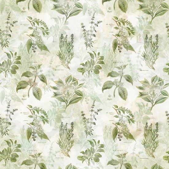 Herb Vintage Farmhouse MRD11-331  by McKenna Ryan, Hoffman California Fabric