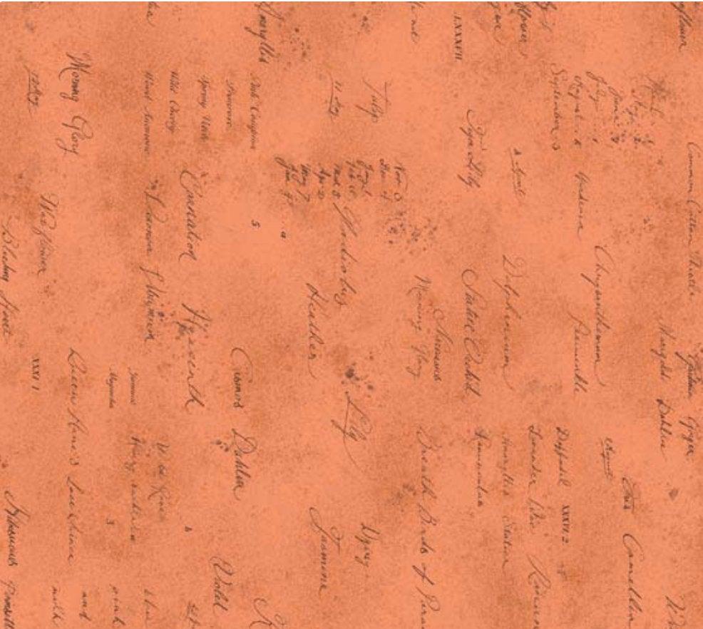 Memoire a Paris Quilt Fabric - Text in Orange - 820819-40 Japanese Fabric