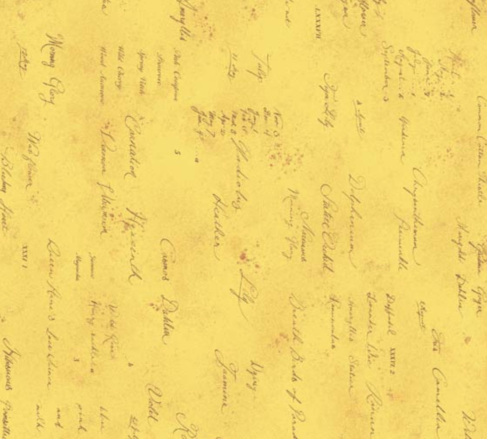 Memoire a Paris Quilt Fabric - Text in Yellow - 820819-50 Japanese Fabric