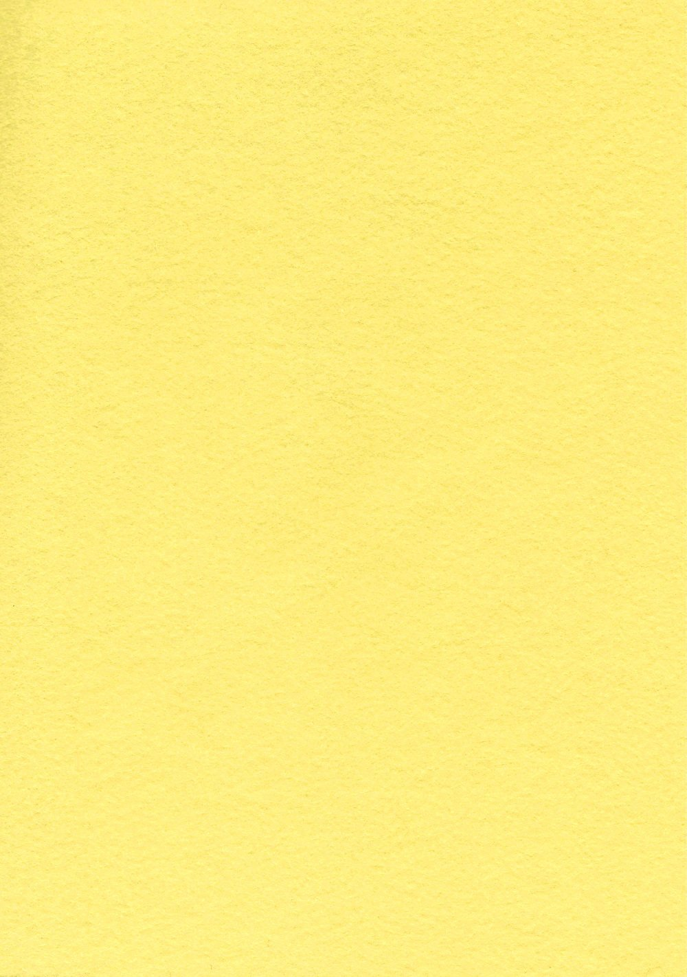 Buttercup - 12 x 18 Square
