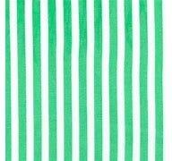 Michael Miller Clown Stripe Green