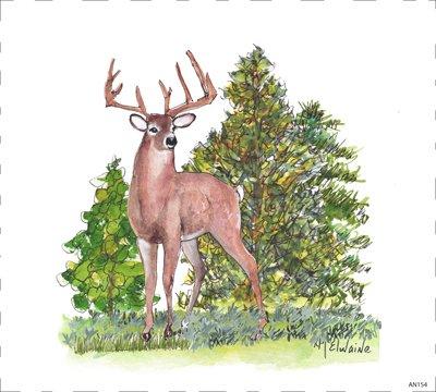 Woodland Deer AN154