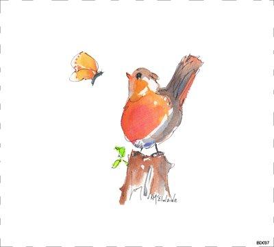 Bird BD037