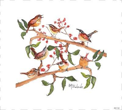 Bird BD132 Wren