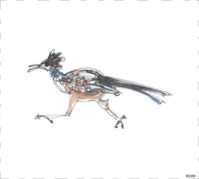 Bird BD006