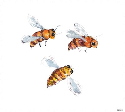 Bees  EL020